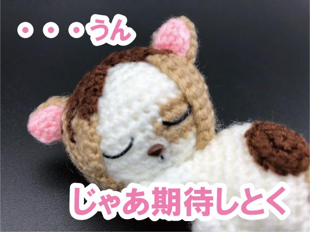 ハイキュー!!研磨ネコ